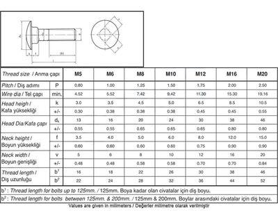 Civtec 3/8X120 Yuvarlak Başlı (YB) Demir Cıvata Beyaz 1 Kg Civtec